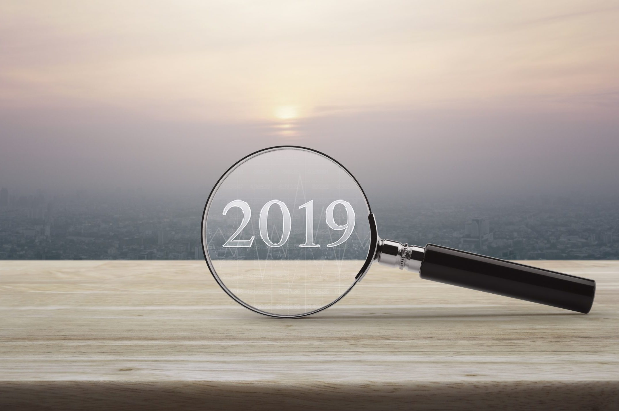 2019 magnifying glass