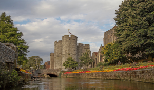Canterbury offering AAT level 3